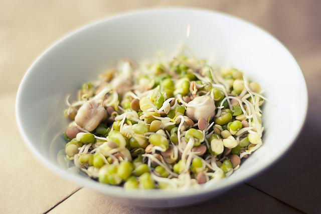 Soybean, Sprouts, Soya, Food, Healthy, Fresh, Organic