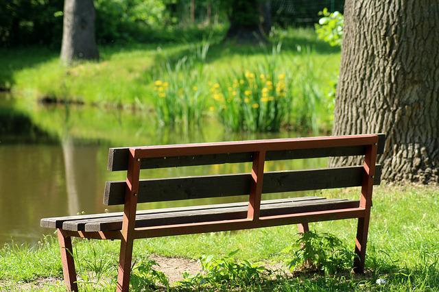 Bench, Nature, Rest, Over The Water, Spacer, Relaxation