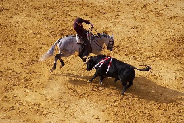 Corrida, Bull, Spain, Arena