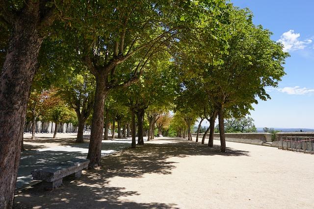 Spain, Trees, Summer, Dump