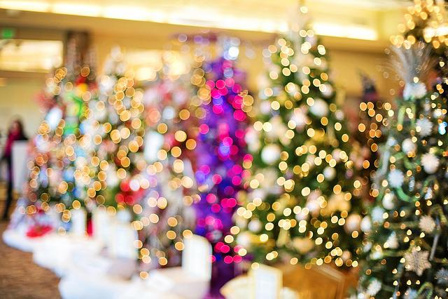 Christmas Trees, Lights, Twinkle, Sparkle, Holiday