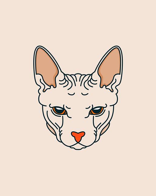 Paint, Sphynx, Sphynx Cat, Kitty, Kitten, Exotic, Rare