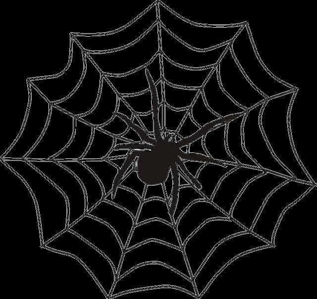 Spider, Spider's Web, Spiderweb, Cobweb, Creepy