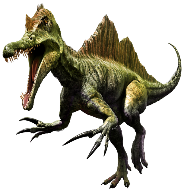 Dinosaur, Prehistoric, Dino, Spinosaurus, Spinosaur