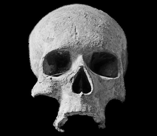 Skull, Stone Skull, Head, Spiritual, Stone, Ornament