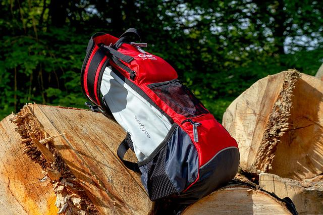 Backpack, Nature, Sport, Wood, Tree, Adventure, Sporty
