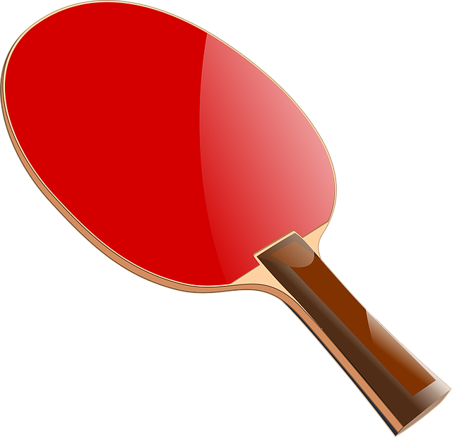 Bat, Casino, Ping Pong, Pingpong Bat, Sport, Sports