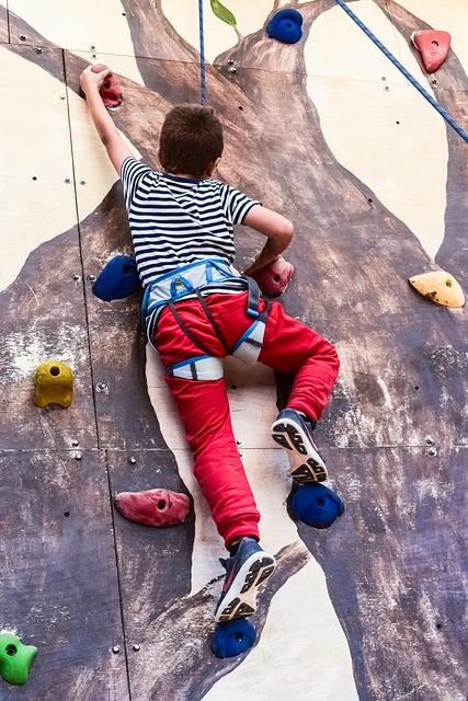 Climbing Wall, Climb, Climbing, Sport, Active, Climber