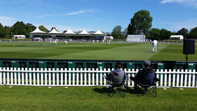 Cricket, Sport, New, Zealand, Cricket Field