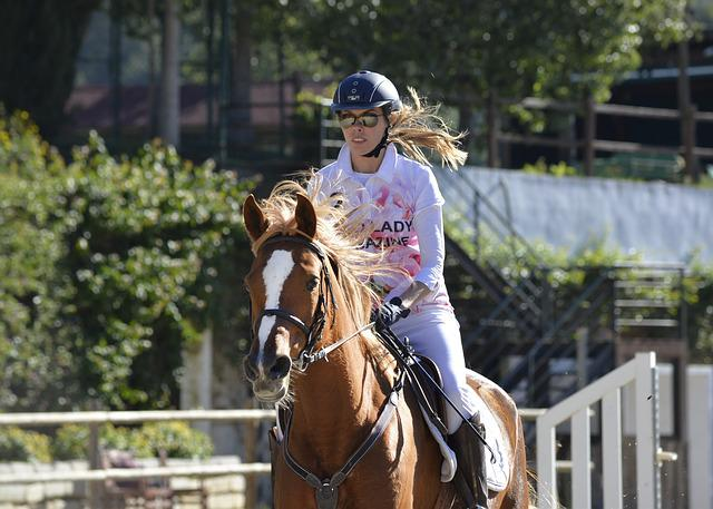Horse, Sport, Competition, Equestrian, Jumping, Jump
