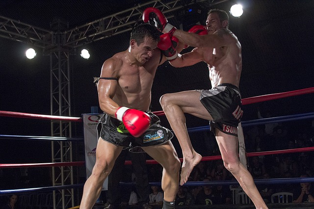 Sport, Action, Muay Thai, Fight, Athlete, Ring, Judge