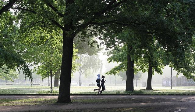 Jogging, Movement, Fitness, Fit, Run, Park, Sport, Jog