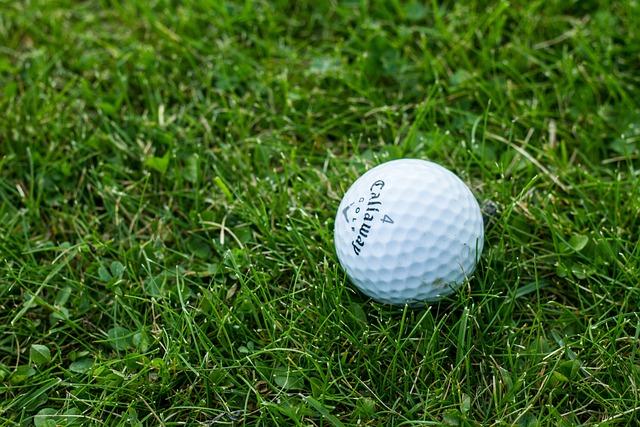 Golf, Golf Ball, Grass, Green, Norway, Oslo, Sport