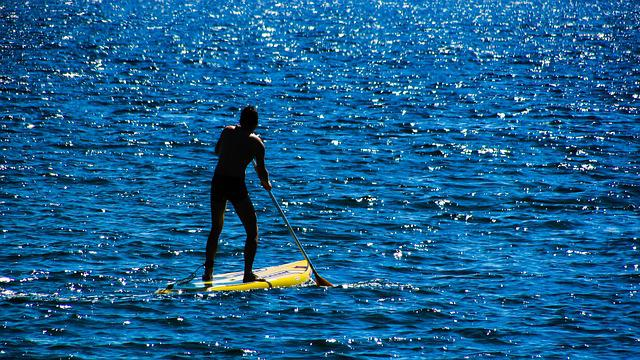 Paddling, Paddleboard, Board, Water, Sport, Recreation