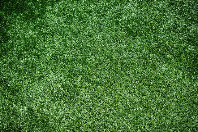 Artificial Turf, Sports Turf, Artificial Grass, Lawn