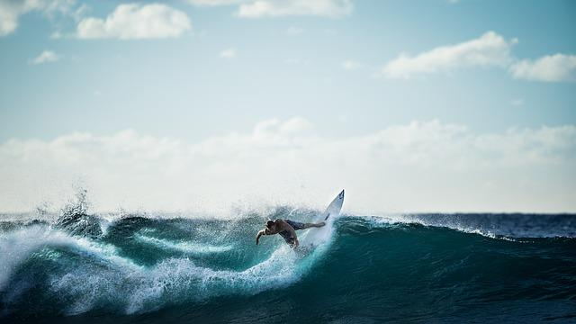 Surfing, Surfer, Wave, Ocean, Sea, Water, Sports