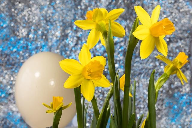 Easter, Easter Egg, Spring, Narcissus, Amaryllis Plant
