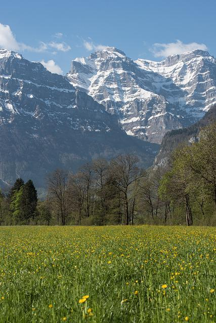 Spring, Canton Of Glarus, Mountains, Flowers, Meadow