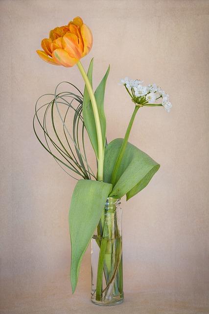 Flowers, Tulip, Orange, Flower Vase, Spring Flowers