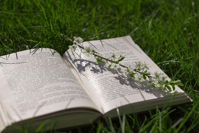 Book, Grass, Nature, Spring