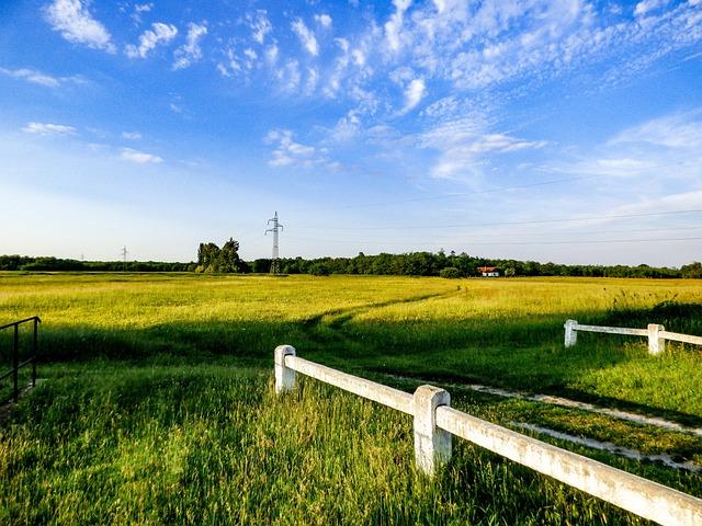 Field, Meadow, Nature, Spring, Bridge, Landscape