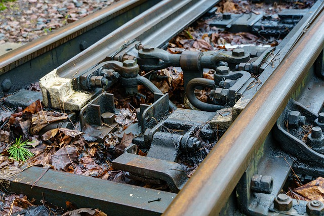 Narrow Gauge Railroad, Rails, Rusty, Spring