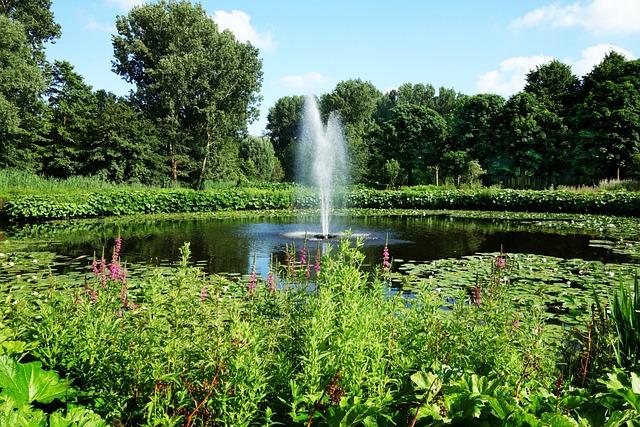 Fountain, Pond, Spray, Spurt, Jet, Pool, Water, Park