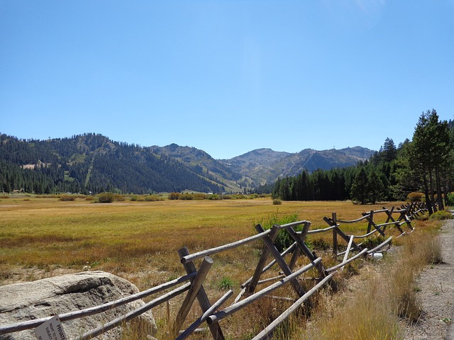 Squaw Valley, Fence, Meadow, California, Landscape