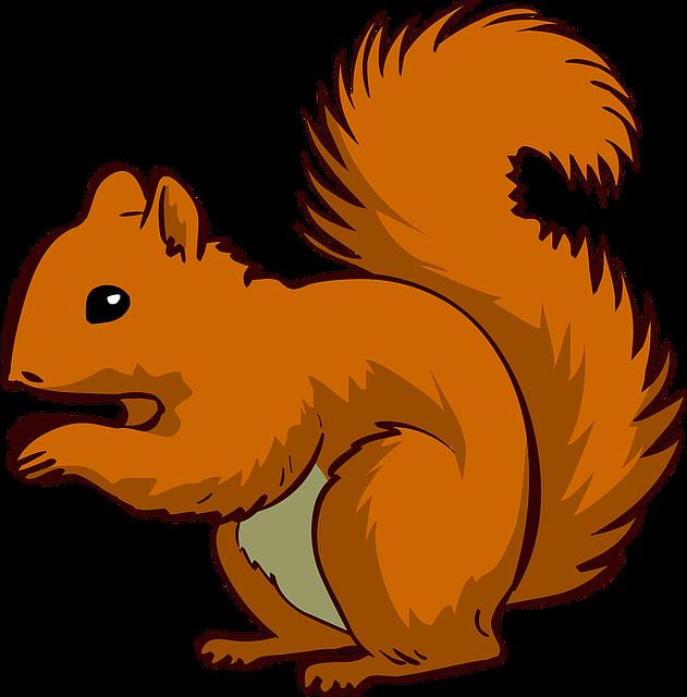Squirrel, Animal, Pet, Brown Animals, Brown Pets