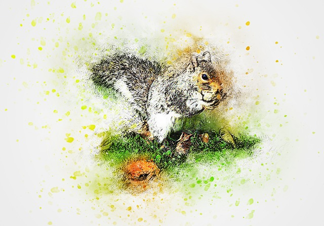 Squirrel, Animal, Eating, Art, Abstract, Watercolor