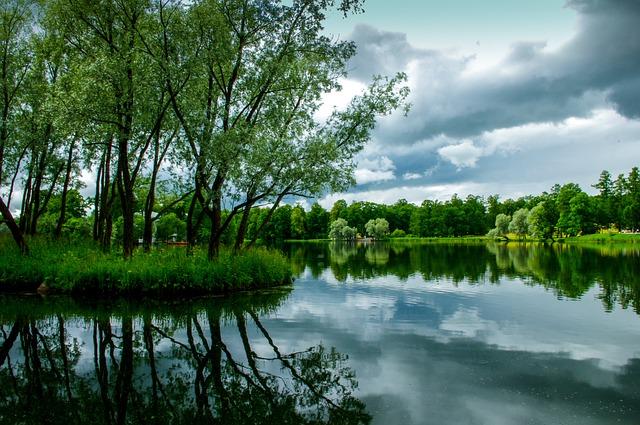 Water, Landscape, Nature, Gardens, St Petersburg