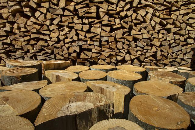Wood, Holzstapel, Growing Stock, Firewood, Stacked Up