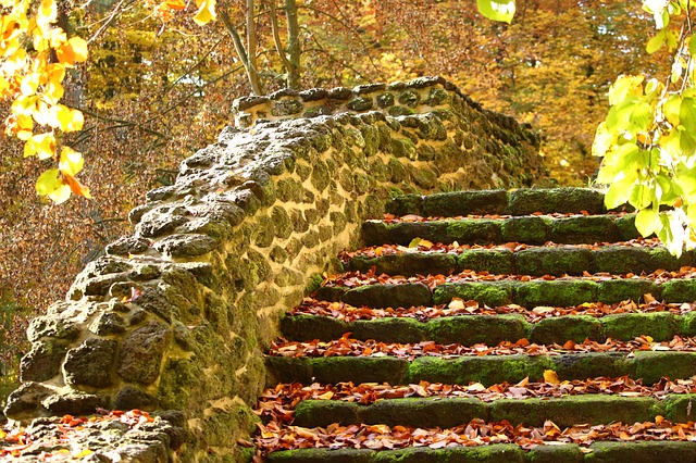 Autumn, Stairs, Fall Foliage, Stair Step, Castle Park