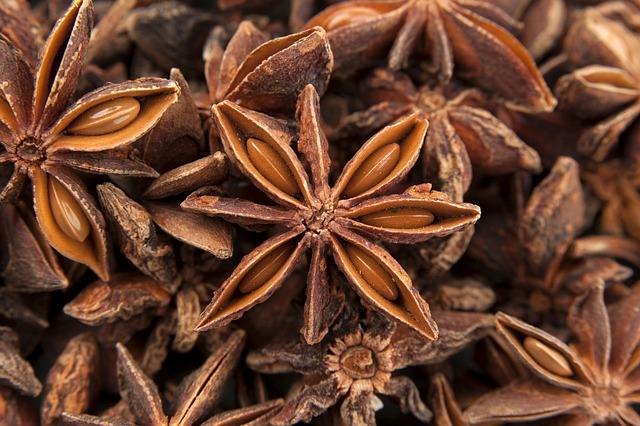 Anis, Spice, Steranijs, Kruiden, Staranis, Ingredients