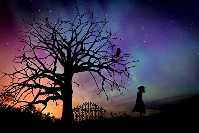 Girl, Starry Sky, Evening Sky, Fairy Tales, Fantasy