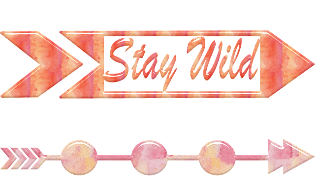 Arrows, Gold Foil, Watercolor, Stay Wild, Curled Arrow