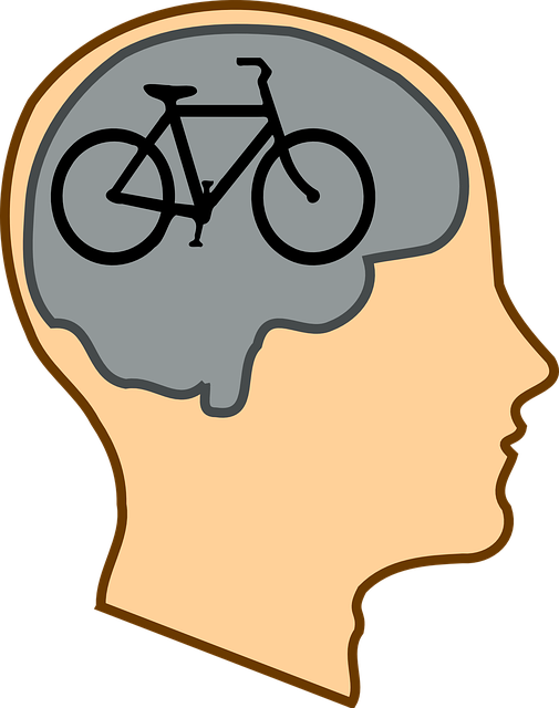 Bicycle For Our Minds, Quote, Steve Jobs, Likened