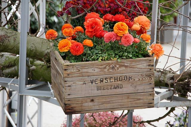 Flower Basket, Decoration, Decorative, Deco, Still Life