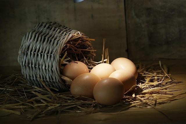 Food, Basket, Wood, Nature, Still Life, Farm