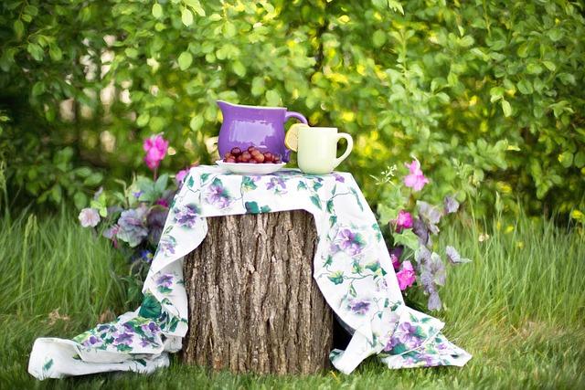 Summer, Still-life, Garden, Outdoors, Tea Party