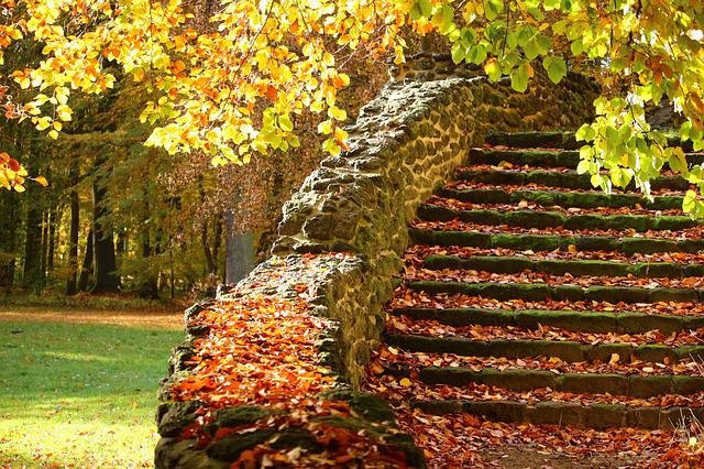 Stairs, Stone Steps, Autumn, Gradually, Stone