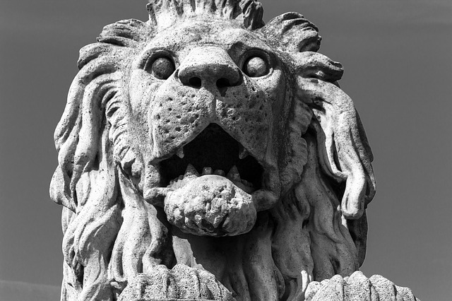 Leo, Statue, Budapest, Stone, Architecture, Monument