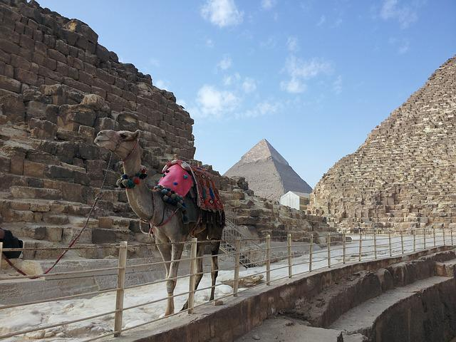 Egypt, Pyramids, Giza, Stone, Camel, Desert