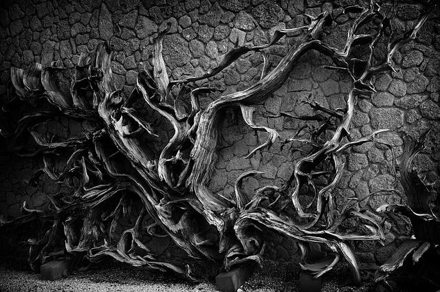 Death, Wood, Bark, Stone Wall, The Darkness