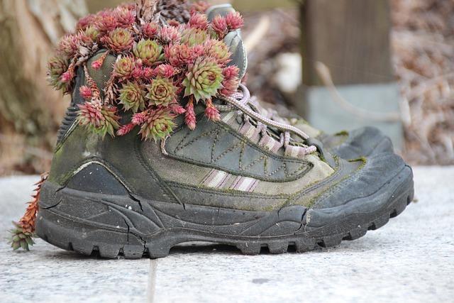Hiking Shoes, Shoes, Gartendeko, Planted, Stone Wurz