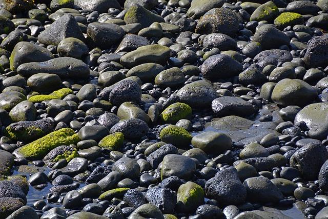 Stones, Moss, Water, Wet, Nature, Sea, Black Green