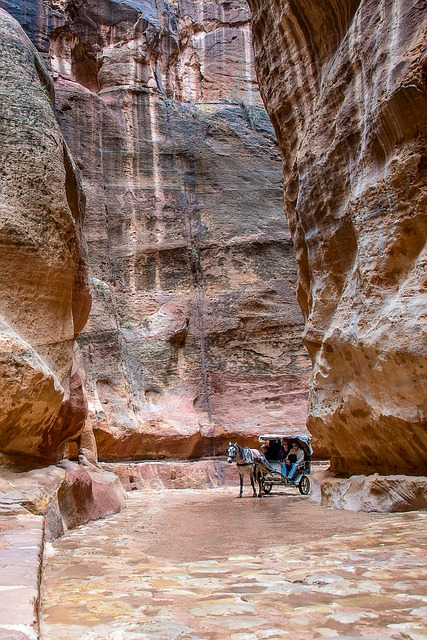 Jordan, Petra, Horse, Road, Stones