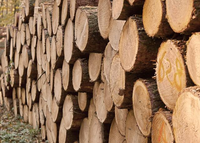 Wood Trunks, Forest, Strains, Log, Stacked, Wood, Tribe