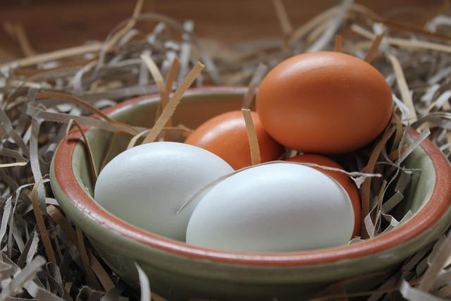Food, Eggs, Nesting Material, Straw, Desktop, Hens Egg