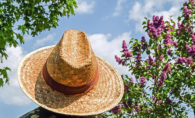 Hat, Straw Hat, Sun Protection, Braid, Straw, Mr Hat